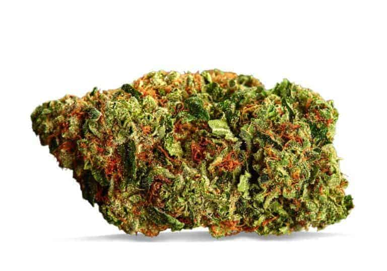 Cannaflower-Hawaiian-Haze-