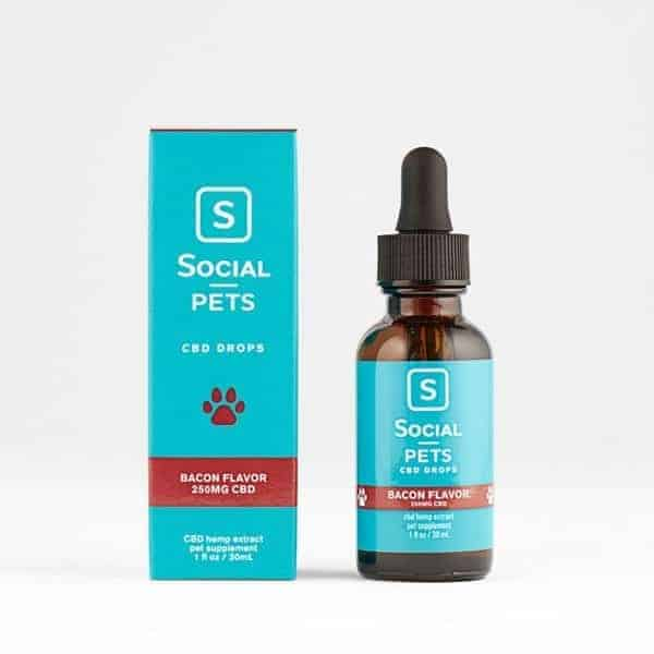 Social-CBD-Tincture-Oil-for-Pets-250mg-Bacon